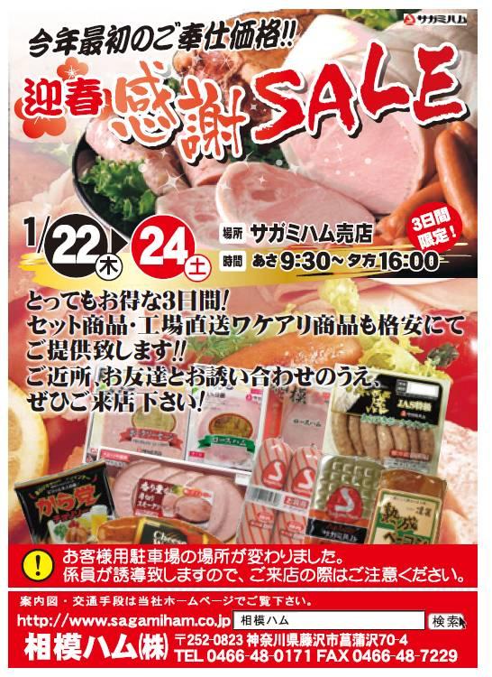 sale201501
